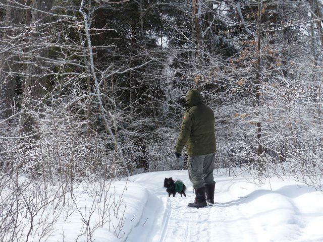 Winter Views Bearskin Lodge